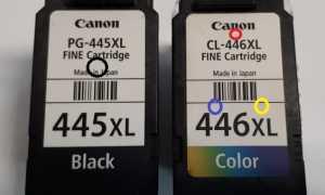Как заправить картридж Canon pg 445 black и cl 446 цветной самостоятельно
