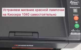 На принтере Куосера 1040 горит красная кнопка и не печатает: что делать, как исправить